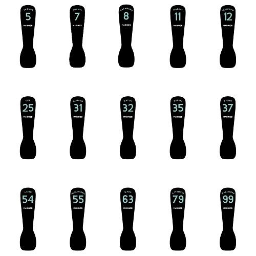 【シークレット商品】BSWシークレットアイススプーン(30選手+ロゴマーク)