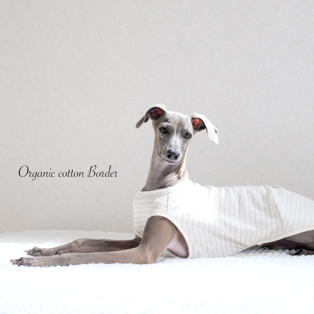 犬服|イタグレ服|ミニピン服|愛犬と環境にやさしいオーガニックコットン|選べる4タイプ×3カラー(ボーダー/パイル/レーシーニット)