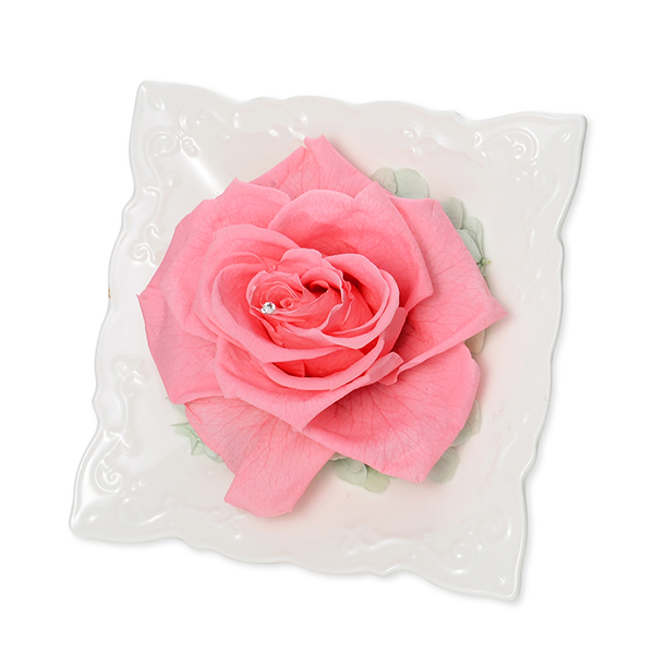 フレームアレンジ About a rose