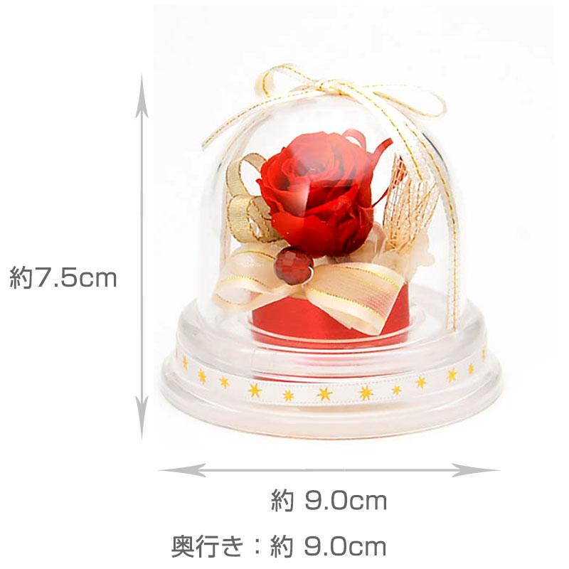 ドームアレンジ 誕生石ミニドーム【1月】