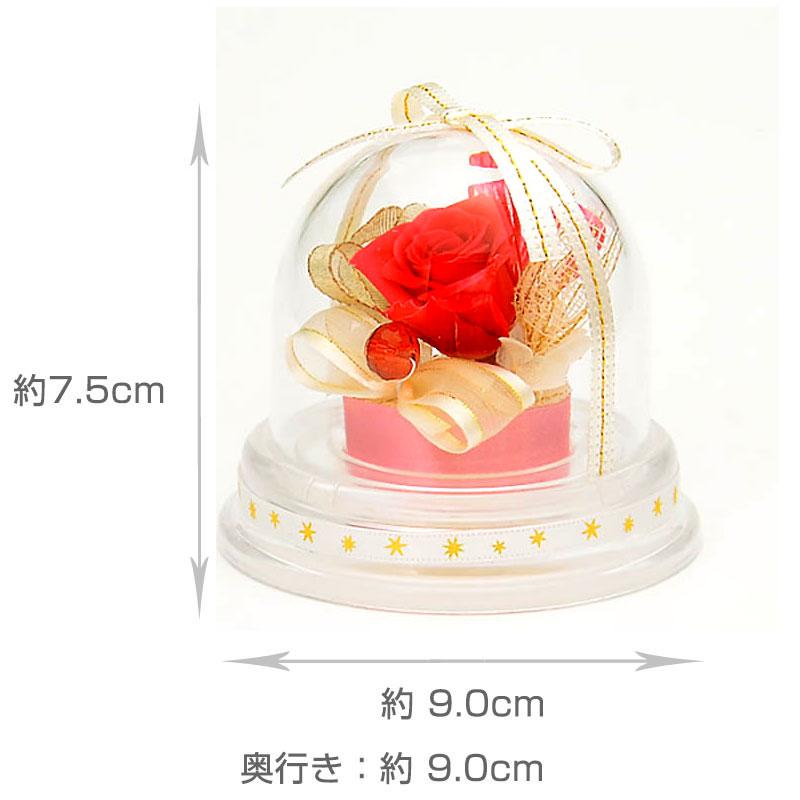 ドームアレンジ 誕生石ミニドーム【7月】