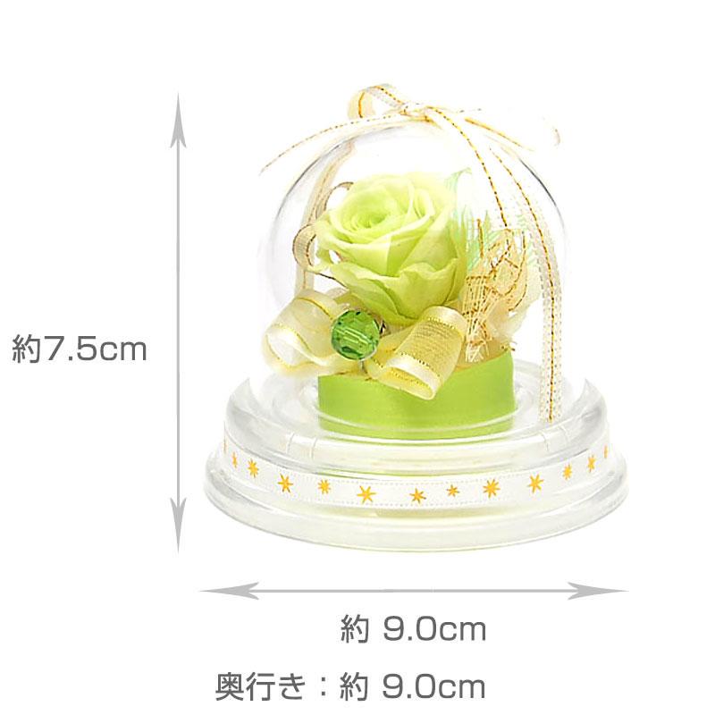 ドームアレンジ 誕生石ミニドーム【8月】
