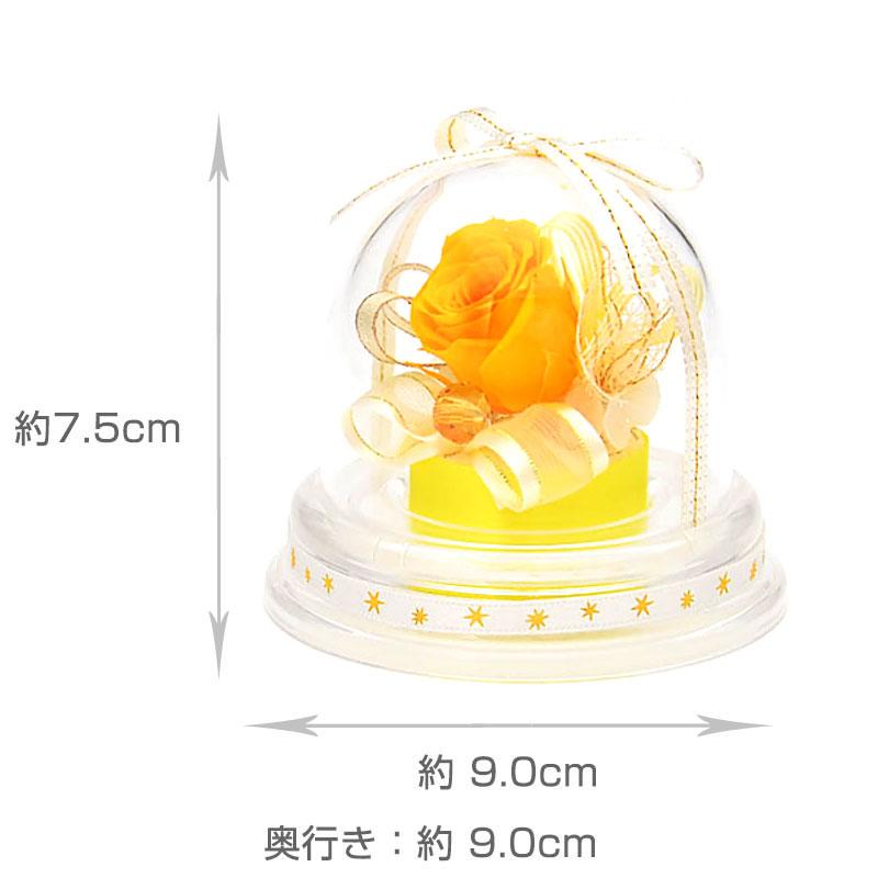 ドームアレンジ 誕生石ミニドーム【11月】