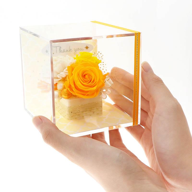 キューブアレンジ ThankYou サンキュー 3色 イエロー