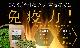 モリンガ発祥の地ヒマラヤ産 奇跡のハーブ ヒマラヤモリンガ オーガニックモリンガ100%タブレット 90錠入/1ヶ月分 無添加・無農薬・無化学肥料  【1か月分(90粒入)】