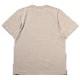 EVANGELION BOX LOGO T-Shirt (サンドベージュ)