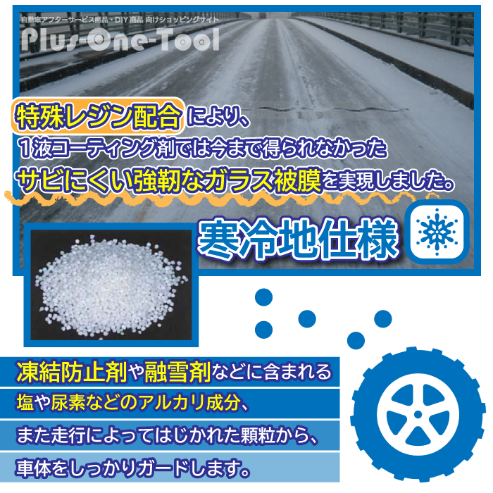 CP-01 ボディガラスコーティング 特別セット