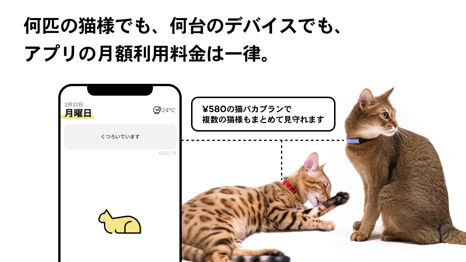 Catlog (基本セット) 猫鈴ゴールド