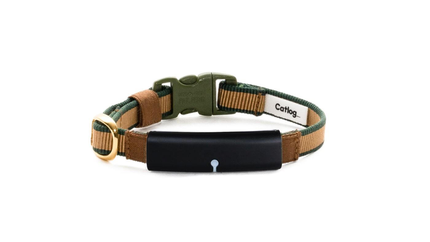 Catlog Belt Premium (単品) TATAMI