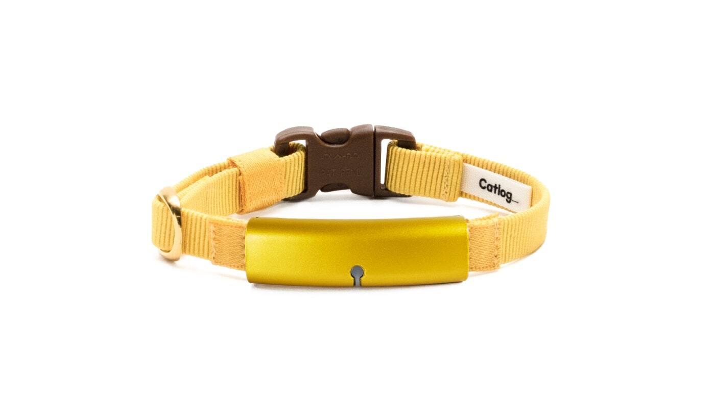 Catlog Belt Premium (単品) TANPOPO