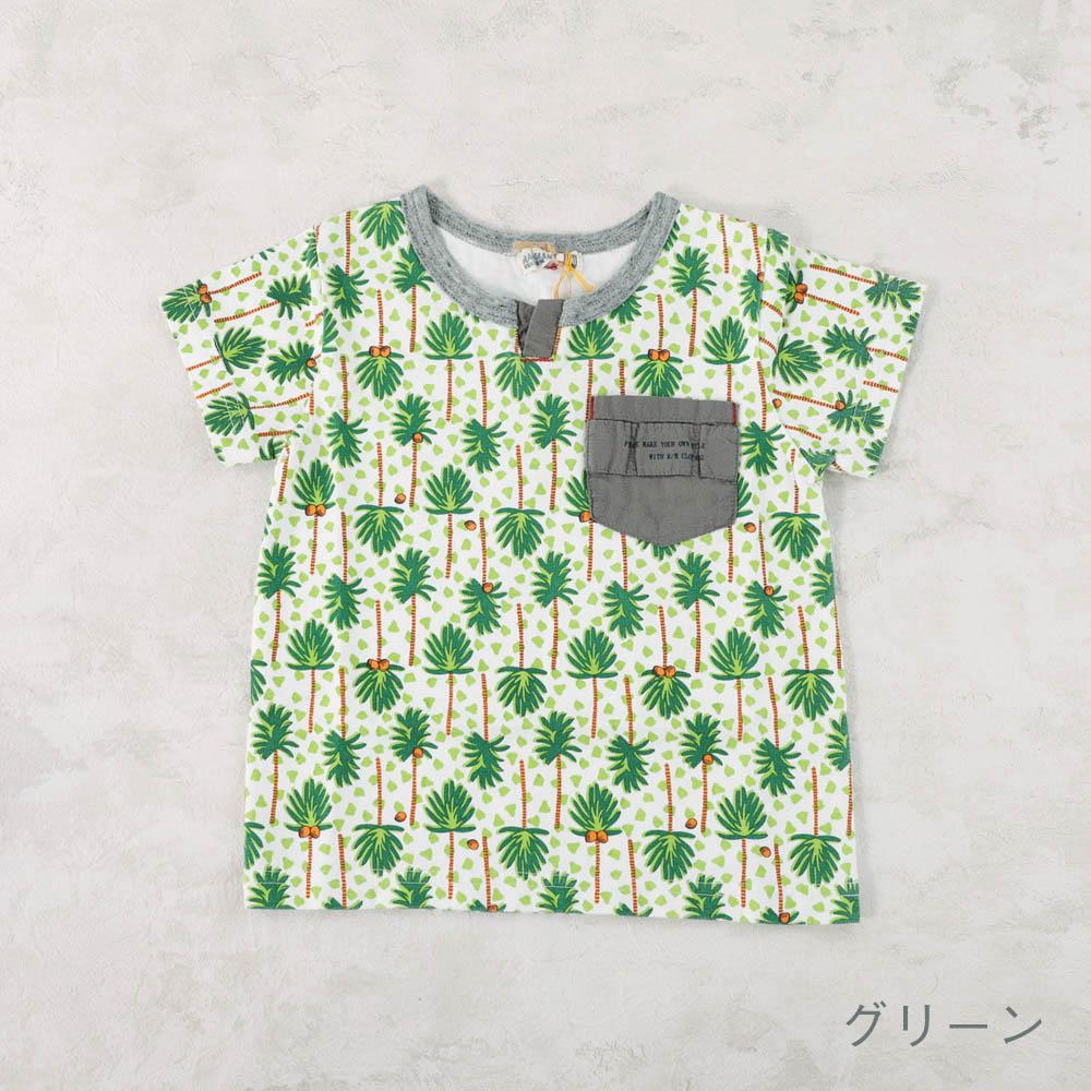 【セール】プリントTシャツ 海のいきものたち ヤシの木