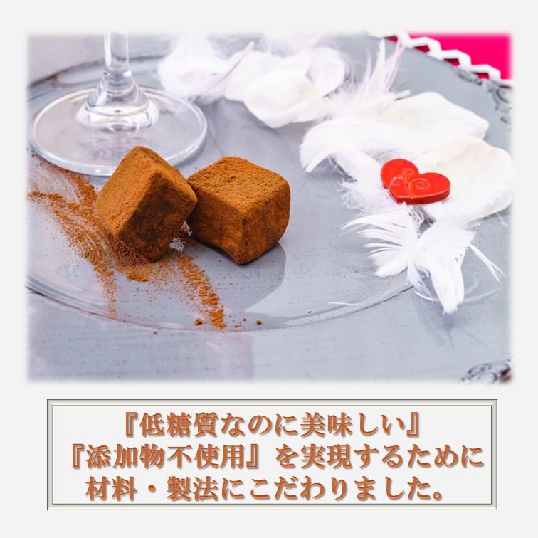 ★バレンタインにおススメ★ 【糖質65%オフ】低糖質生ショコラ *保存料、着色料、香料不使用