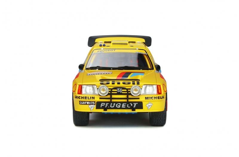 1/18 Peugeot 205 Grand Raid #205