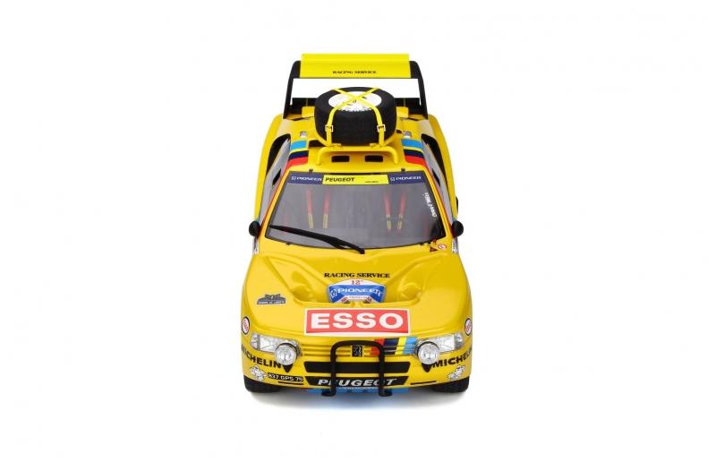 1/18 Peugeot 405 T16 Grand Raid #203