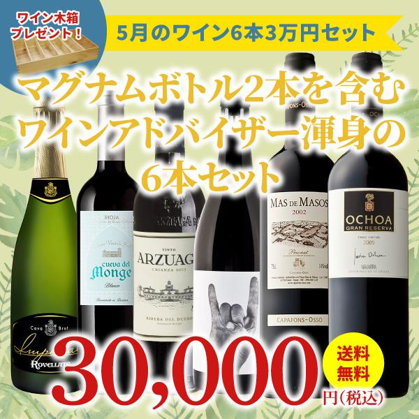 【10セット限定・40%OFF&送料無料】>5月におすすめのお得なワインセット>ワインアドバイザーが選ぶ6本3万円セット>ワイン木箱プレゼント付