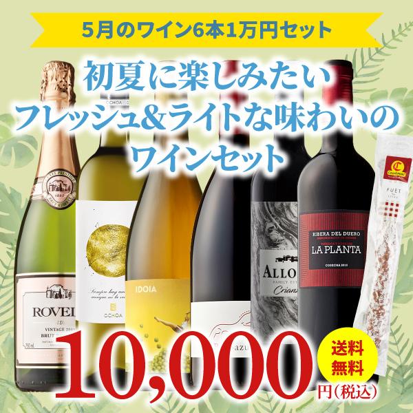 【36%OFF&送料・クール代金無料】>5月におすすめのお得なワインセット>ワインアドバイザーが選ぶ6本1万円セット>人気の「フエ・エキストラ」付