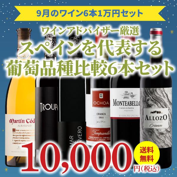 【35%OFF&送料無料】>9月におすすめのお得なワインセット>ワインアドバイザーが選ぶ6本1万円セット