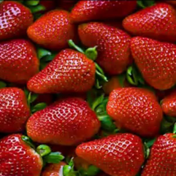 イチゴジャム(オレンジ風味)>Mermelada Extra Fresa al Aroma de Narranja