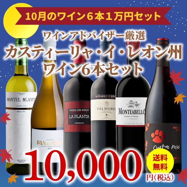 【35%OFF&送料無料】>10月のおすすめワインセット>ワインアドバイザーが選ぶワイン6本1万円セット