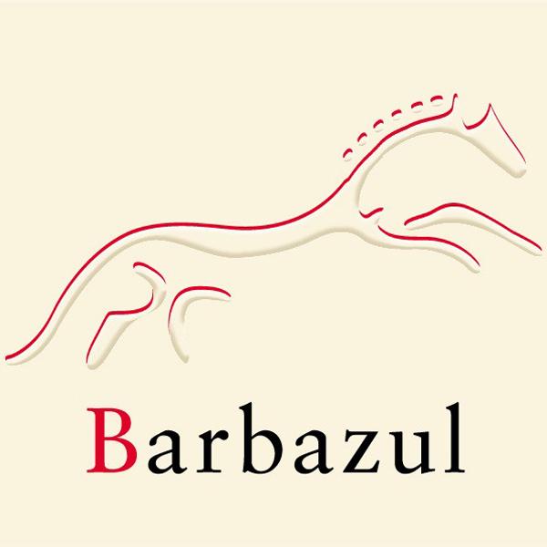 バルバスール・ティント>Barbazul Tinto