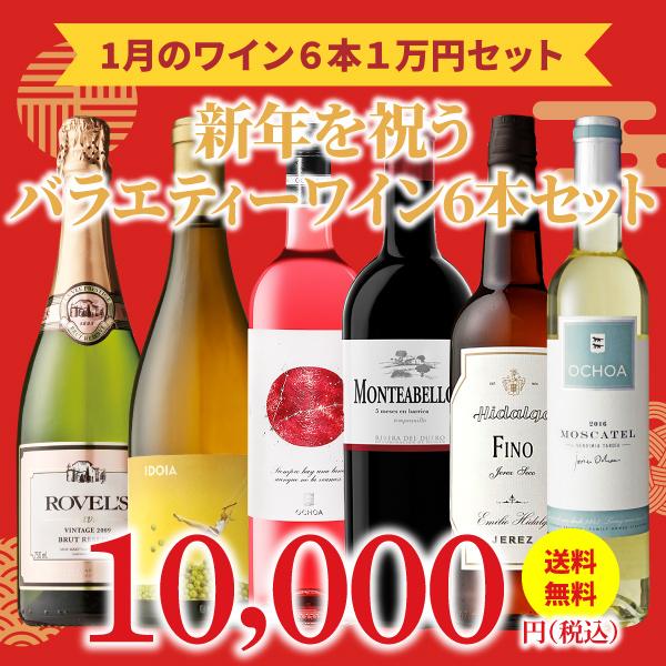 【35%OFF&送料無料】>2021年1月のおすすめワインセット>ワインアドバイザーが選ぶワイン6本1万円セット
