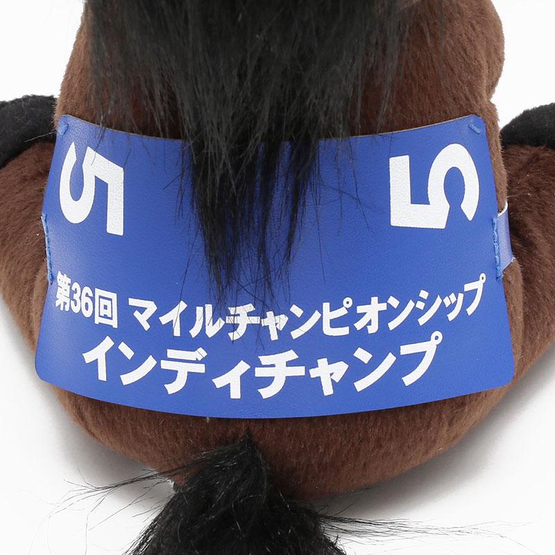 アイドルホース【インディチャンプ/'19マイルCS】(レギュラー)