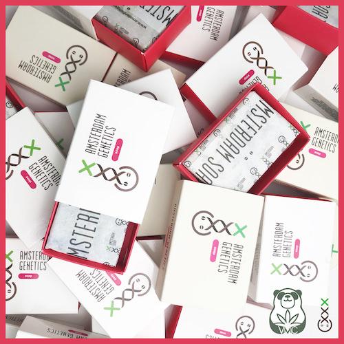 AMSTERDAM GENETICS HEMPコスメ オイルソープ  / HEMP Oil Soap 5 Fragrances