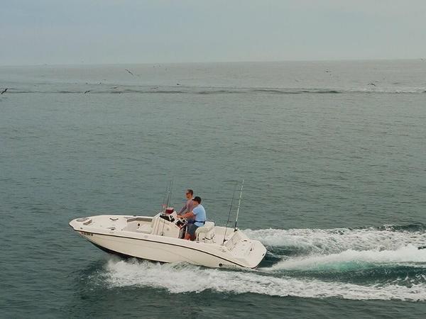 2019'Yamaha Marine 190 FSH (USA)