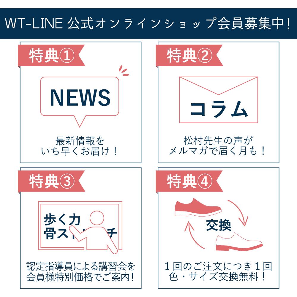 WT-LINE ウォーキングシューズ 520001