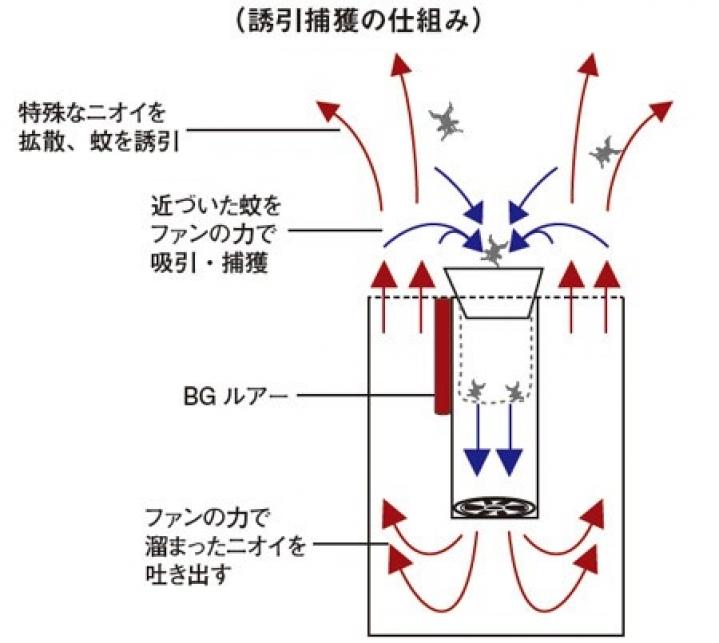BGセンチネル2