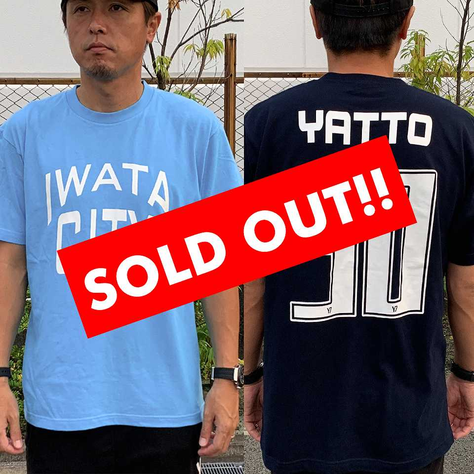 IWATA-TS