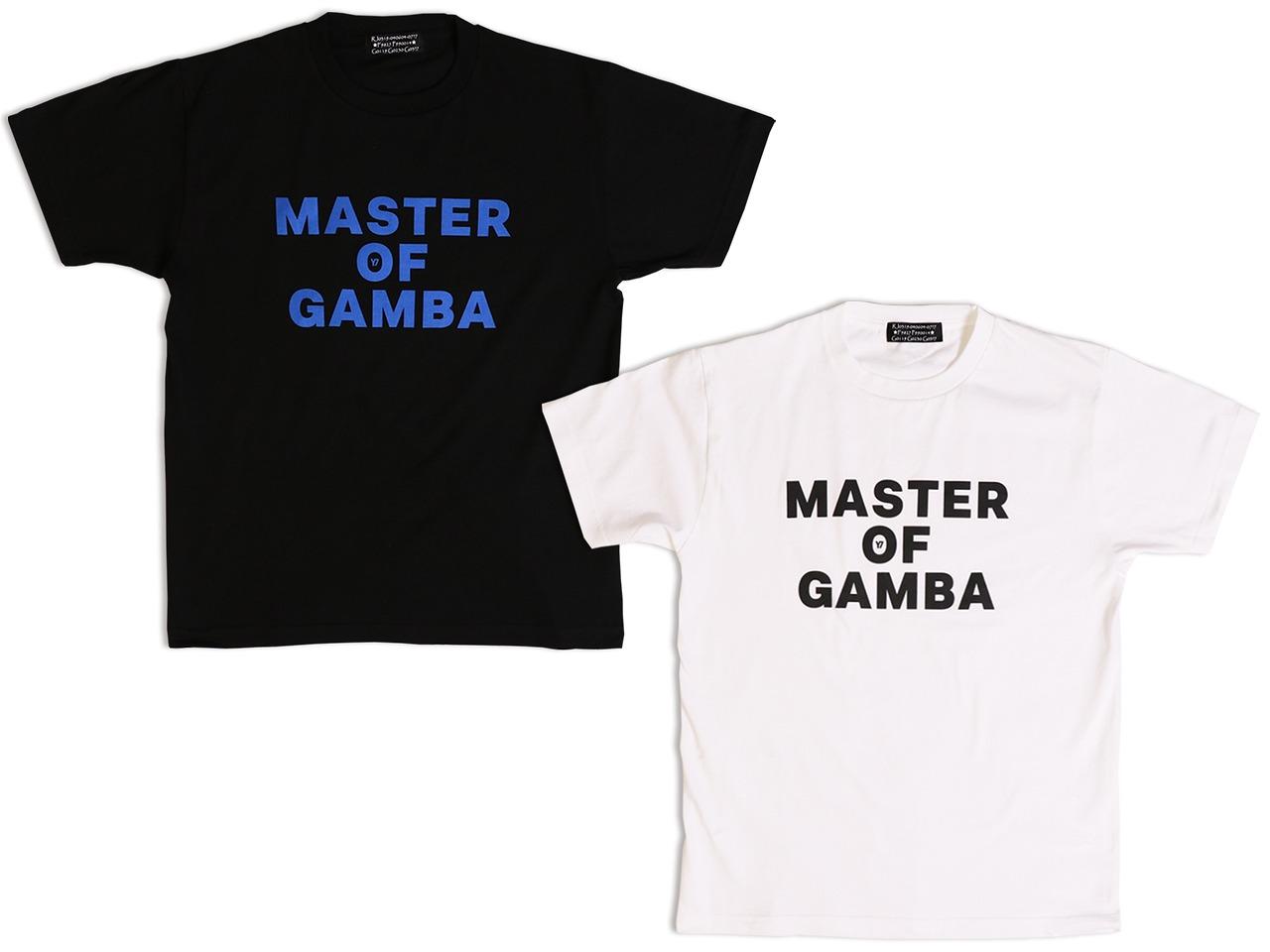 Master of GAMBA-TS