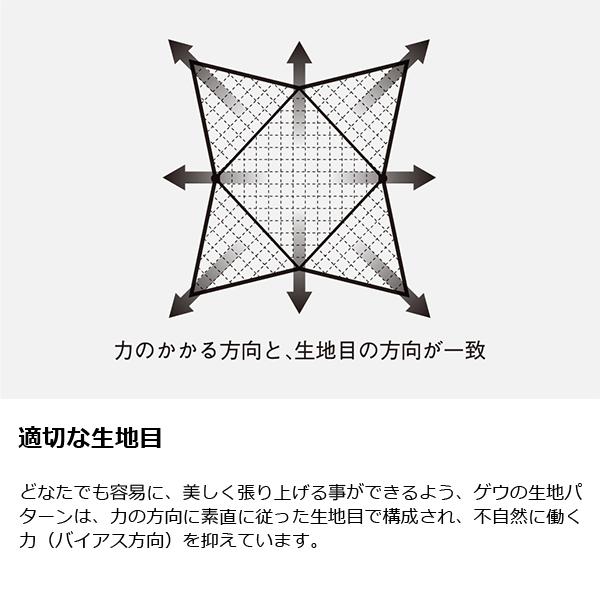 ゼインアーツ ゲウ TP-003