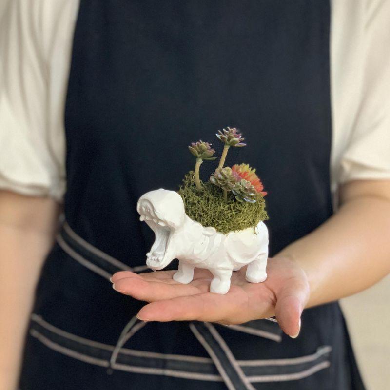 アニマルデコ 造花アレンジ カバ HAT8001HI / SPICE OF LIFE