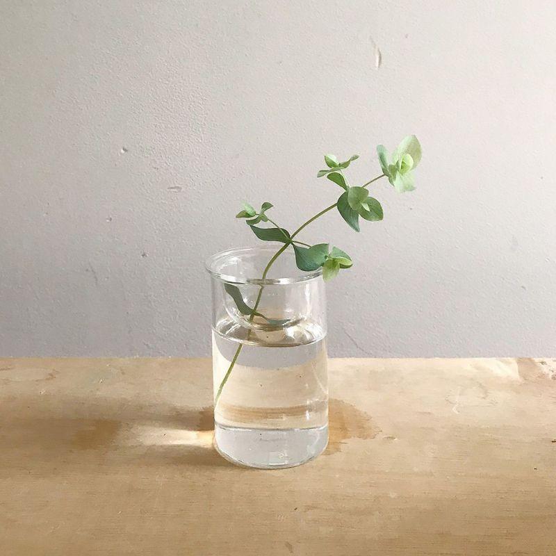 MINI BULB VASE 水栽培ガラスベース クリア 8.5cm KEGY4052 / SPICE OF LIFE