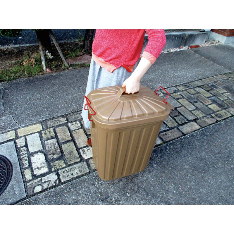 ふた付きゴミ箱 ブラウン 60L PALE×PAIL IWLY4010BR / SPICE OF LIFE
