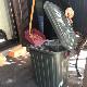 ふた付きゴミ箱 チャコールグレー 60L PALE×PAIL IWLY4010CG / SPICE OF LIFE