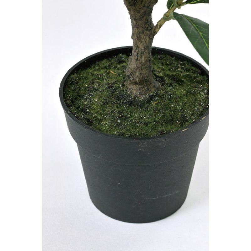 [SPICE OF LIFE] フェイクグリーン オリーブの木 50cm CXGK1011