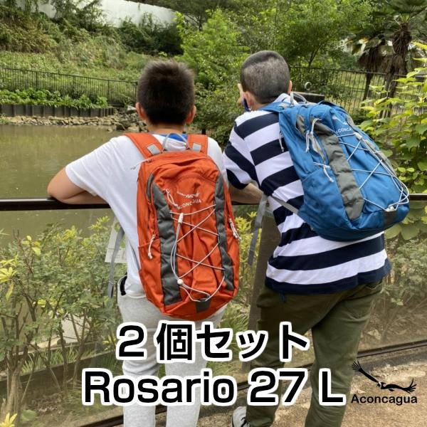 軽量折り畳み傘 2本つき【2個セット】小型リュック デイパック Rosario ロサリオ 27L 結婚祝い 結婚記念日