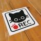 ドライブレコーダーREC 猫イラスト カッティングステッカー