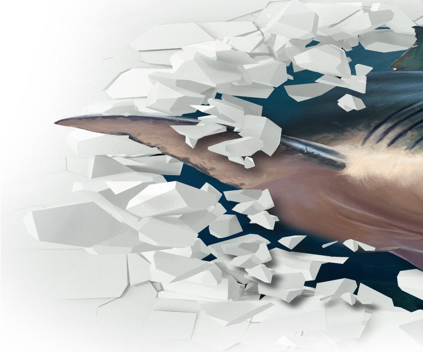 飛び出すサメ