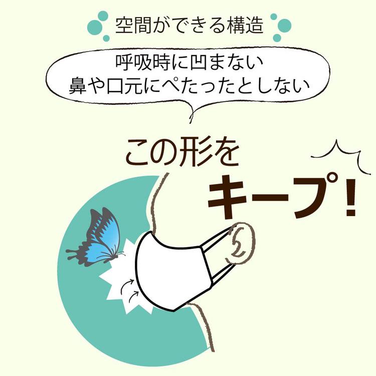 布マスク クレンゼ抗菌 オーガニックコットン ノーズワイヤー入り AEMA-CL-OG 03シリーズ Ver3