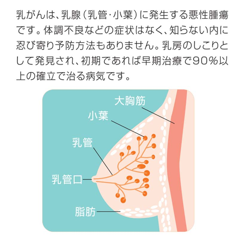 ブレストケアグラブ 【乳がん自己触診補助用具】