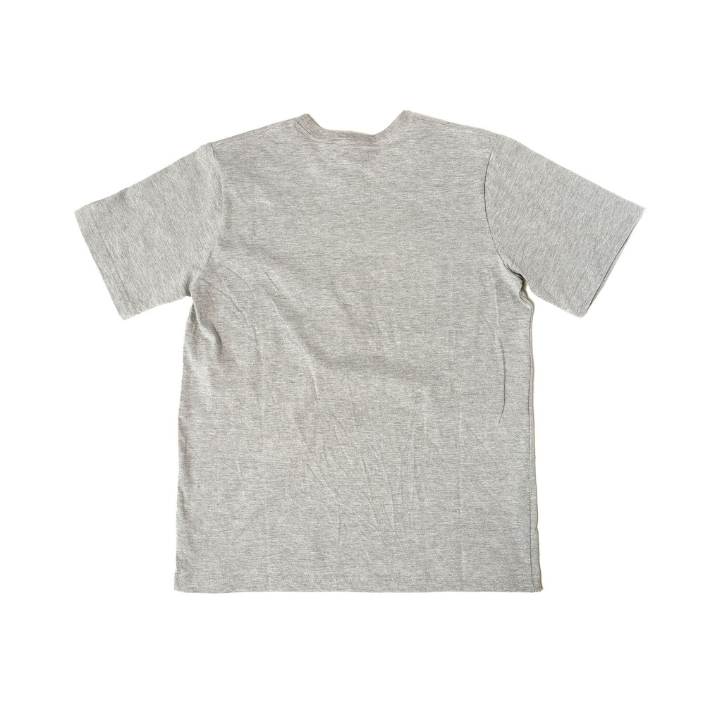 【RAISED BY WOLVES/レイズドバイウルブス】RESTRICTED TEE Tシャツ / GREY