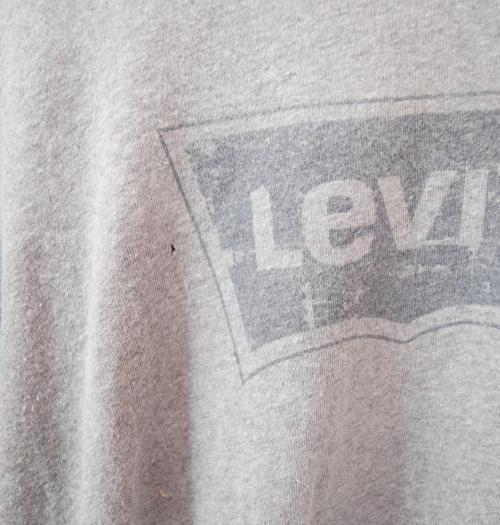 Levis Boxlogo BigT(GRY)