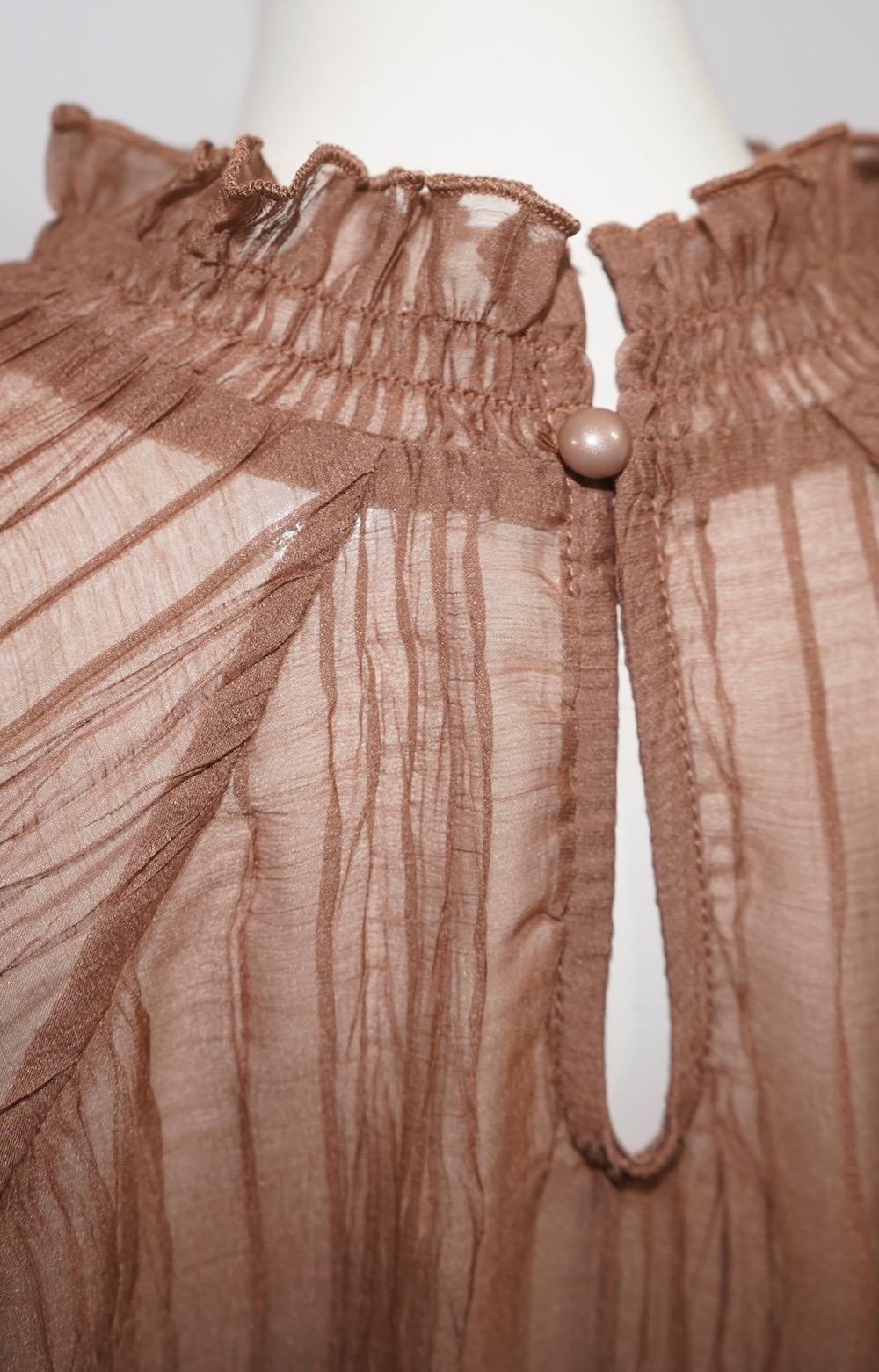 Balloon Sleeve Crinkle Sheer Tops (brown)