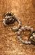 Pearl&Twist Ring Pierced Earrings (gold)
