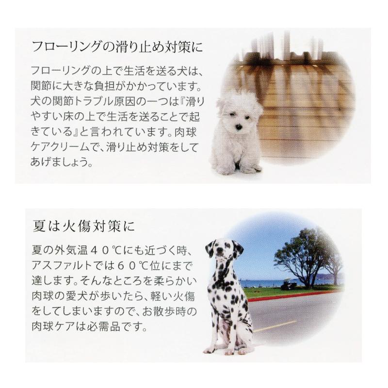 肉球ケアオールインワンジェルクリーム C36/大型犬用(柔軟・保湿)