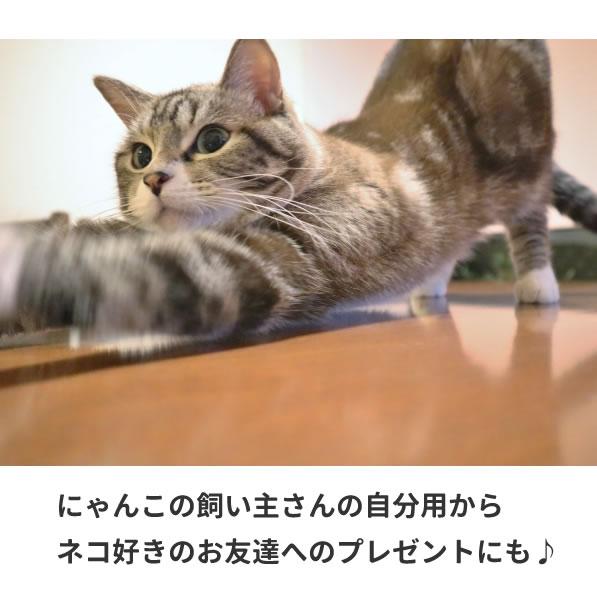 猫グッズ ネコ tシャツ グッズ 雑貨 プレゼント おしゃれ 横 服 オリジナル メンズ レディース S M L XL 3L 4L プリント 面白い 可愛い おしゃれ かわいい