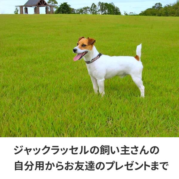 ジャックラッセル tシャツ グッズ 雑貨 服 オリジナル 犬柄 メンズ レディース S M L XL 3L 4L プリント 犬 かっこいい 面白い 可愛い おしゃれ かわいい ギフト